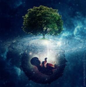 foetus terre arbre